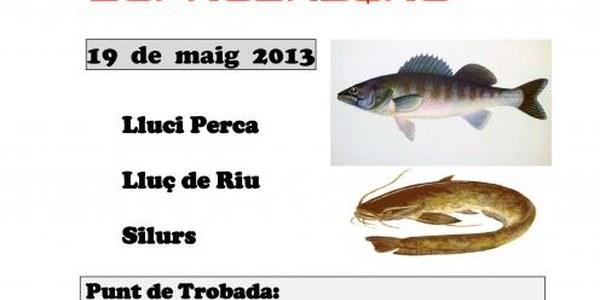 2013 CONCURS PESCA DEPREDADORS