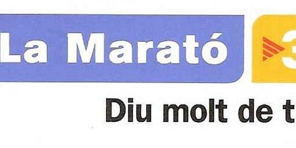 2013 LA MARATÓ TV3