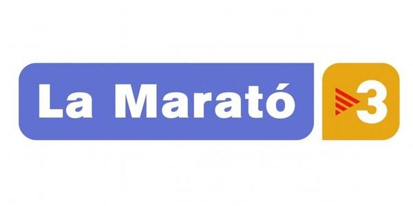 2013 - MARATO TV3 (Resum)