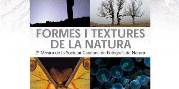 2014 - FORMES I TEXTURES DE LA NATURA