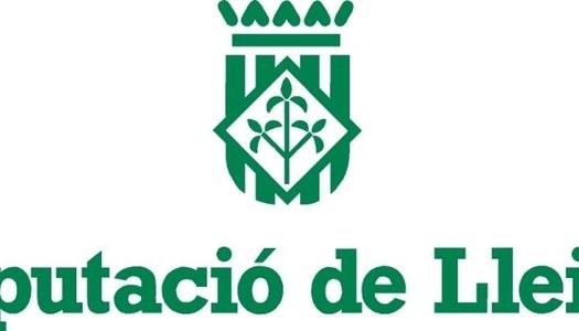 SUBVENCIÓ DIPUTACIO DE LLEIDA